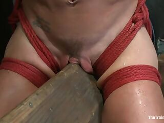 Hard Bodied Slut, Felony, is Torn Apart During a Long Day of Brutal Torture